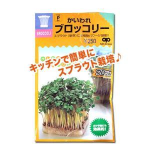 スプラウトの種 かいわれ ブロッコリー 40ml(メール便発送)|vg-harada