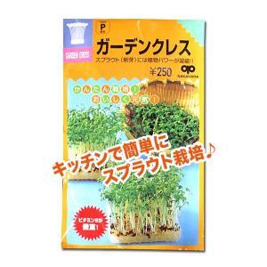 スプラウトの種 ガーデンクレス(胡椒草)35ml(メール便発送)|vg-harada