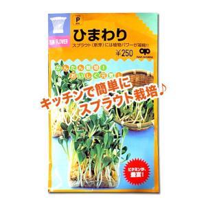 スプラウトの種 ひまわり 60ml(メール便発送)|vg-harada
