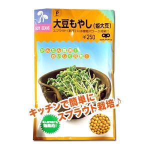 スプラウトの種 大豆もやし(姫大豆)60ml(メール便発送)|vg-harada