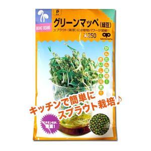 スプラウトの種 グリーンマッペ(緑豆)60ml(メール便発送)|vg-harada