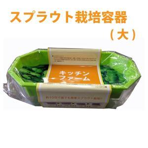 スプラウト専用 栽培容器(大)|vg-harada