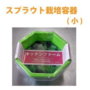スプラウト専用 栽培容器(小)|vg-harada