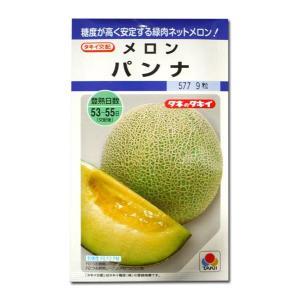 野菜の種/種子 パンナ・メロン めろん 9粒 (メール便可能)タキイ種苗|vg-harada