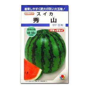 野菜の種/種子 秀山・スイカ 11粒 (メール便可能)タキイ種苗|vg-harada