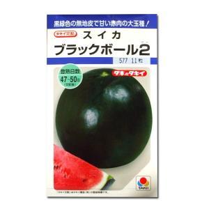 野菜の種/種子 ブラックボール2・スイカ 11粒 (メール便可能)タキイ種苗|vg-harada
