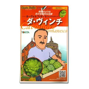 野菜の種/種子 ダ・ヴィンチ/カーヴォルフ フィオーレ(ロマネスコタイプ)・カリフラワー・イタリア野菜 50粒 (メール便可能)|vg-harada
