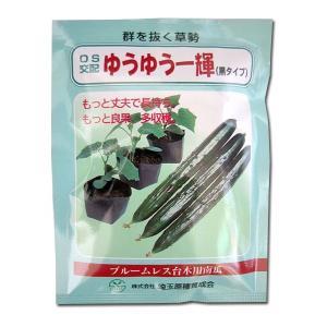野菜の種/種子 ゆうゆう一輝/黒タイプ・台木 350粒 (メール便発送/大袋)|vg-harada