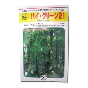野菜の種/種子 ハイ グリーン21・きゅうり 350粒 (メール便可能/大袋)|vg-harada