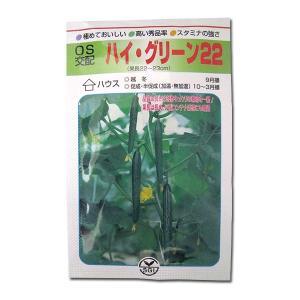 野菜の種/種子 ハイ グリーン22・きゅうり 350粒 (メール便可能/大袋)|vg-harada