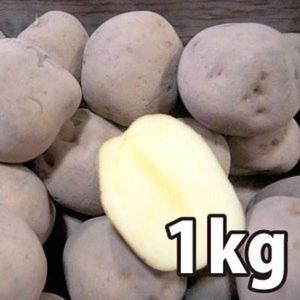 野菜・種/苗[春じゃがいも種芋]北海道産 キタアカリ きたあかり じゃがいも種芋・生もの種 量り売り1kg|vg-harada