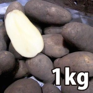野菜・種/苗[春じゃがいも種芋]北海道産 メークイン じゃがいも種芋・生もの種 量り売り1kg|vg-harada