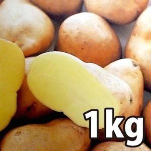 野菜・種/苗[春じゃがいも種芋]インカのめざめ いんかのめざめ  じゃがいも種芋・生もの種 量り売り1kg|vg-harada
