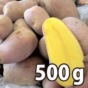野菜・種/苗[春じゃがいも種芋]北海道産 インカのひとみ いんかのひとみ じゃがいも種芋・生もの種 量り売り500g|vg-harada