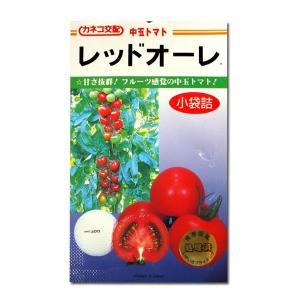 野菜の種/種子 レッドオーレ・トマト 19粒 (メール便可能)|vg-harada