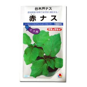 野菜の種/種子 赤ナス・赤茄子 赤なす 台木用ナス 1000粒(メール便可能)タキイ種苗|vg-harada