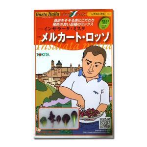 野菜の種/種子 メルカート・ロッソ イタリア野菜 2ml (メール便可能)|vg-harada