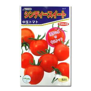 野菜の種/種子 シンディースイート・トマト 21粒(メール便発送)サカタのタネ 種苗|vg-harada