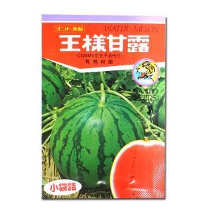 野菜の種/種子 王様甘露・スイカ 10粒 (メール便可能)|vg-harada