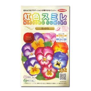 花の種 虹色スミレ[ミックス] 0.1ml(メール便発送)|vg-harada