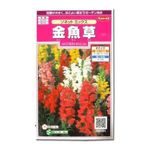 花の種 金魚草[ソネット ミックス] 0.05ml(メール便可能)|vg-harada