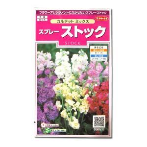 花の種 スプレー ストック[カルテット ミックス] 0.3ml(メール便発送)|vg-harada