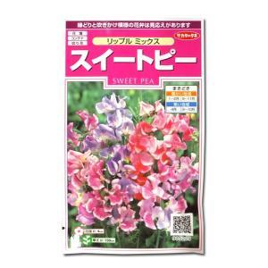 花の種 スイートピー[リップル ミックス] 2ml(メール便可能)|vg-harada