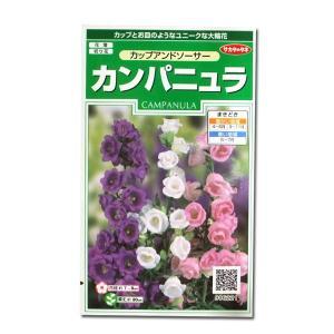 花の種 カンパニュラ[カップアンドソーサー] つりがね草  0.2ml(メール便発送)|vg-harada