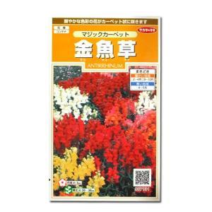 花の種 金魚草[マジックカーペット] 0.1ml(メール便可能)|vg-harada