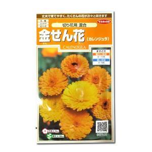 花の種 金せん花[切り花用 混合] 2ml(メール便発送)|vg-harada