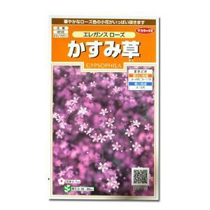 花の種 かすみ草[エレガンス ローズ] 0.3ml(メール便可能)|vg-harada