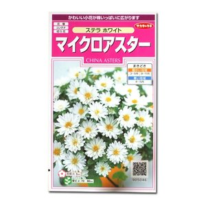 花の種 マイクロアスター[ステラ ホワイト] 0.5ml(メール便可能)|vg-harada