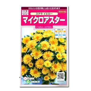 花の種 マイクロアスター[ステラ イエロー] 0.5ml(メール便発送)|vg-harada