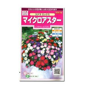 花の種 マイクロアスター[ステラ ミックス] 0.5ml(メール便発送)|vg-harada