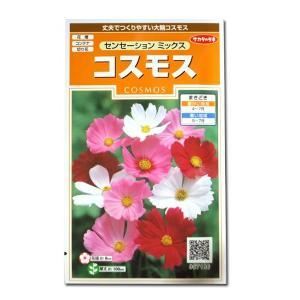 花の種 コスモス[センセーション ミックス] 2ml(メール便可能)|vg-harada