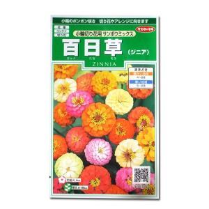 花の種 百日草/ジニア[小輪切り花用 サンボウミックス] 1ml(メール便発送)|vg-harada