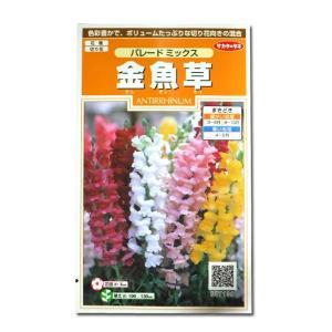 花の種 金魚草[パレードミックス] 0.1ml(メール便可能)|vg-harada