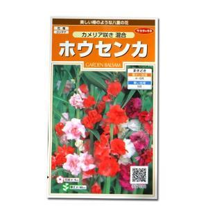 花の種 ホウセンカ[カメリア咲き 混合] 1ml(メール便可能)|vg-harada
