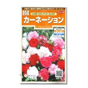 花の種 カーネーション[シャボージャイアント ミックス] 0.3ml(メール便可能)|vg-harada