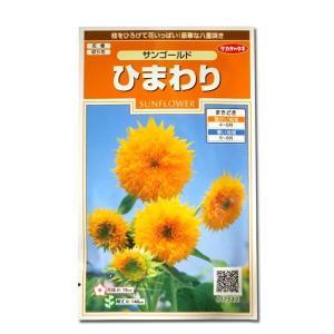 花の種 ひまわり[サンゴールド] 2ml(メール便可能)|vg-harada