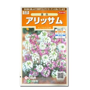 花の種 アリッサム[混合] 0.3ml(メール便可能)|vg-harada