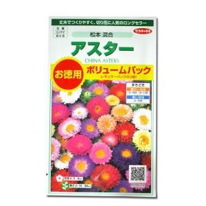 花の種 アスター[松本 混合]ボリュームパック 3ml(メール便発送)|vg-harada