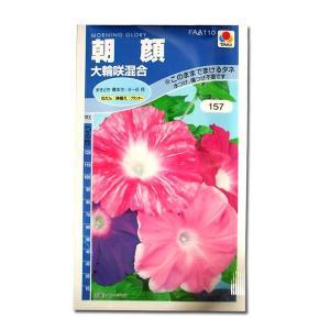 花の種 朝顔[大輪咲混合] 1.5ml(メール便発送)|vg-harada