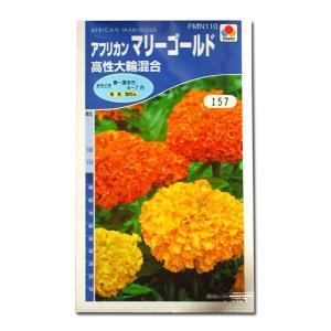 花の種 アフリカン マリーゴールド[高性大輪混合] 5ml(メール便発送)|vg-harada
