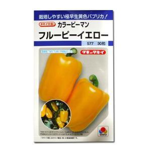 野菜の種/種子 フルーピーイエロー・カラー ピーマン 30粒 (メール便可能)タキイ種苗|vg-harada