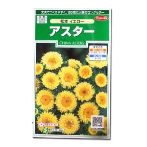 花の種 アスター[松本 イエロー] 1ml(メール便可能) vg-harada