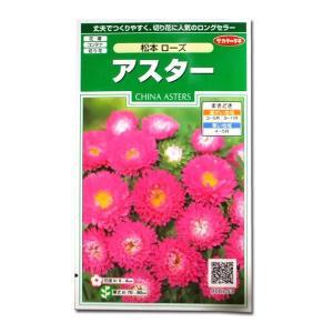 花の種 アスター[松本 ローズ] 1ml(メール便可能) vg-harada