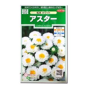 花の種 アスター[松本 ホワイト] 1ml(メール便可能) vg-harada