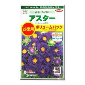 花の種 アスター[松本 パープル]ボリュームパック 3ml(メール便可能)|vg-harada