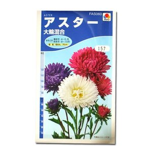 花の種 アスター[大輪混合] 1.2ml(メール便発送)|vg-harada